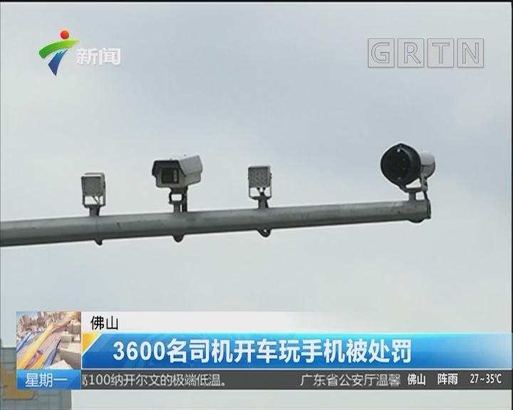 佛山:3600名司机开车玩手机被处罚