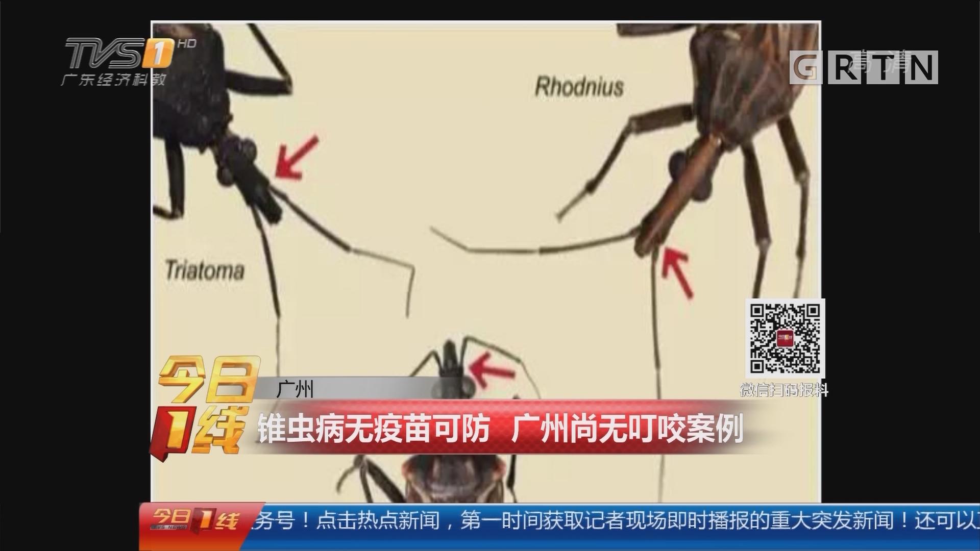 广州:锥虫病无疫苗可防 广州尚无叮咬案例