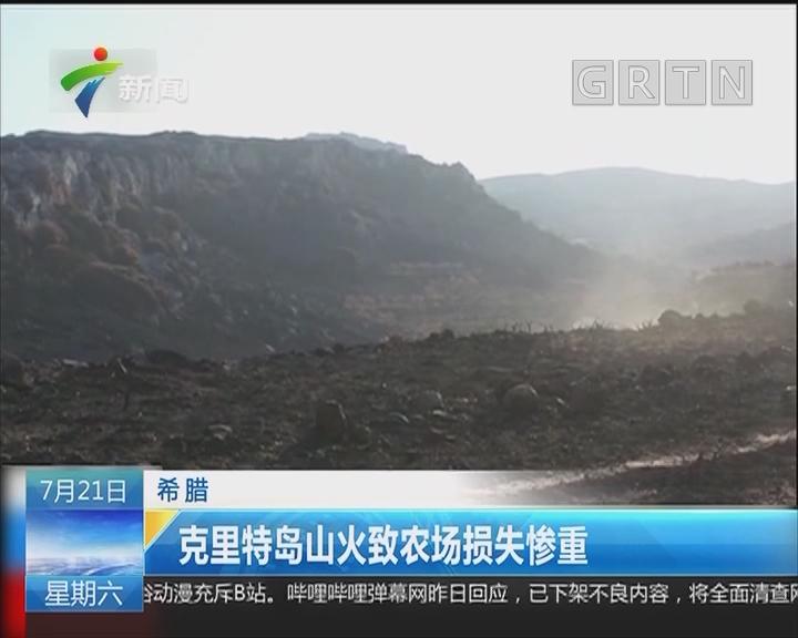 希腊:克里特岛山火致农场损失惨重