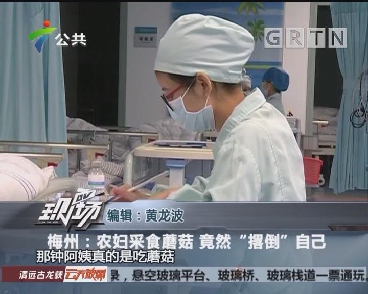 """梅州:农妇采食蘑菇 竟然""""撂倒""""自己"""