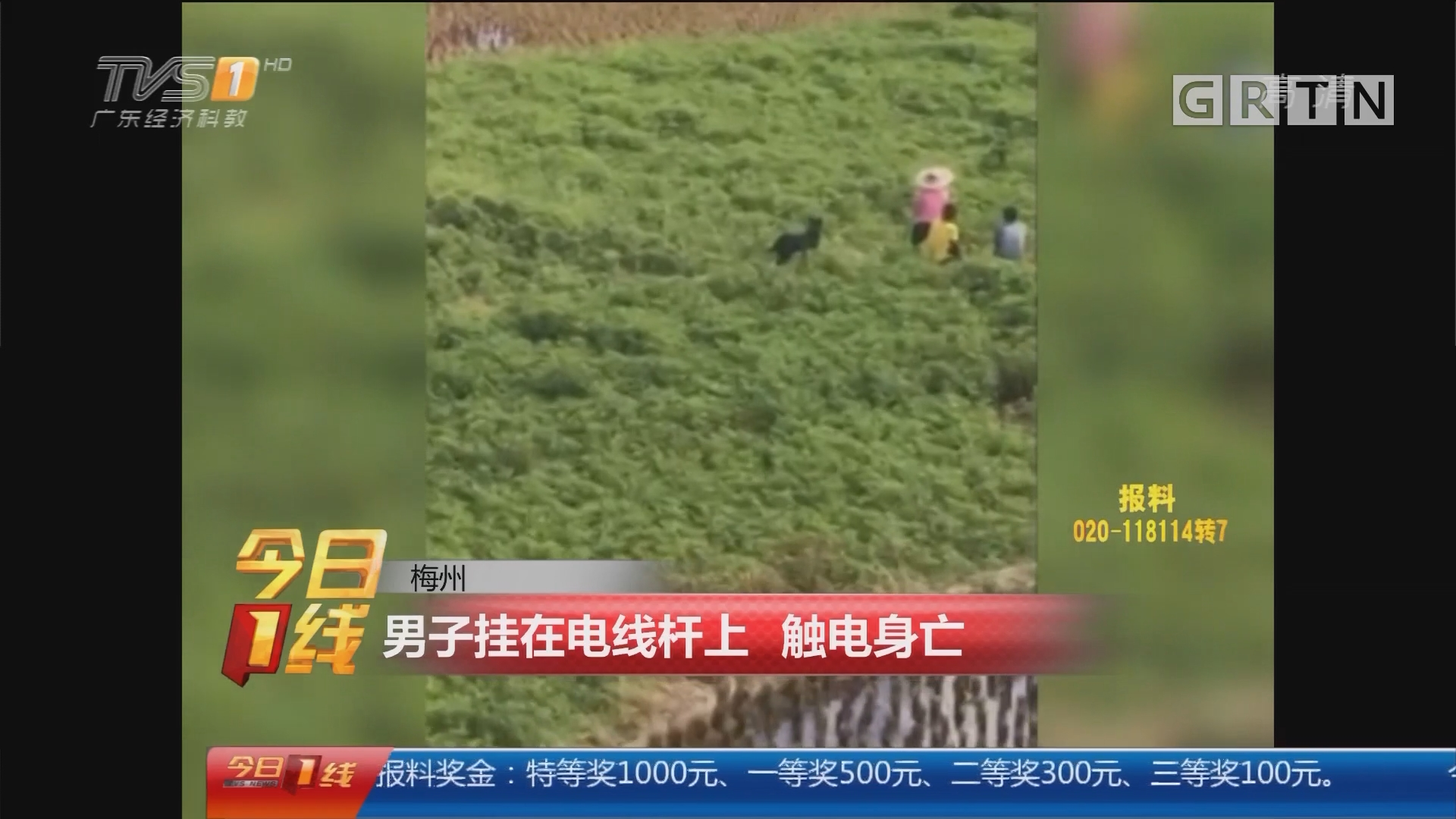 梅州:男子挂在电线杆上 触电身亡