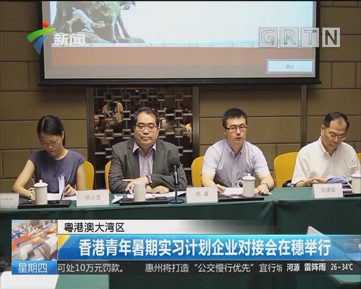 粤港澳大湾区:香港青年暑期实习计划企业对接会在穗举行