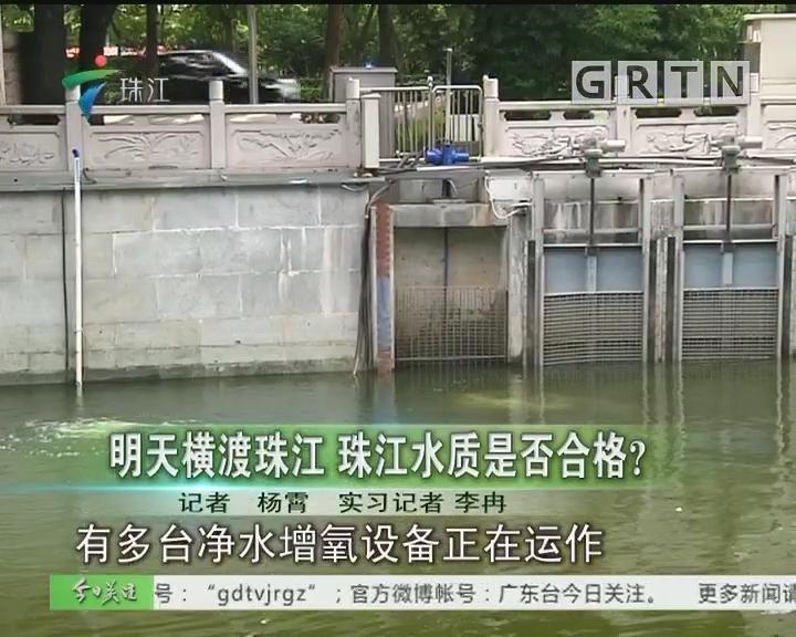 明天横渡珠江 珠江水质是否合格?