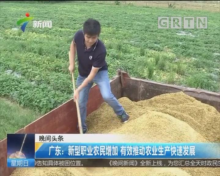 广东:新型职业农民增加 有效推动农业生产快速发展