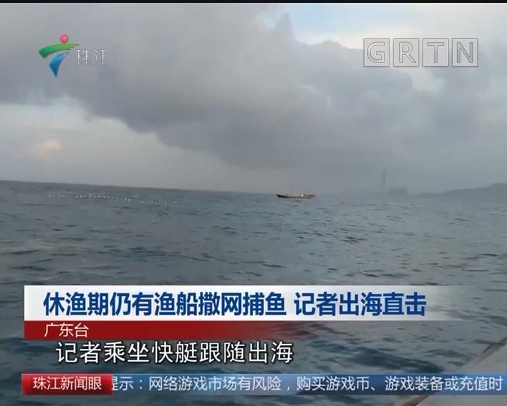 休渔期仍有渔船撒网捕鱼 记者出海直击