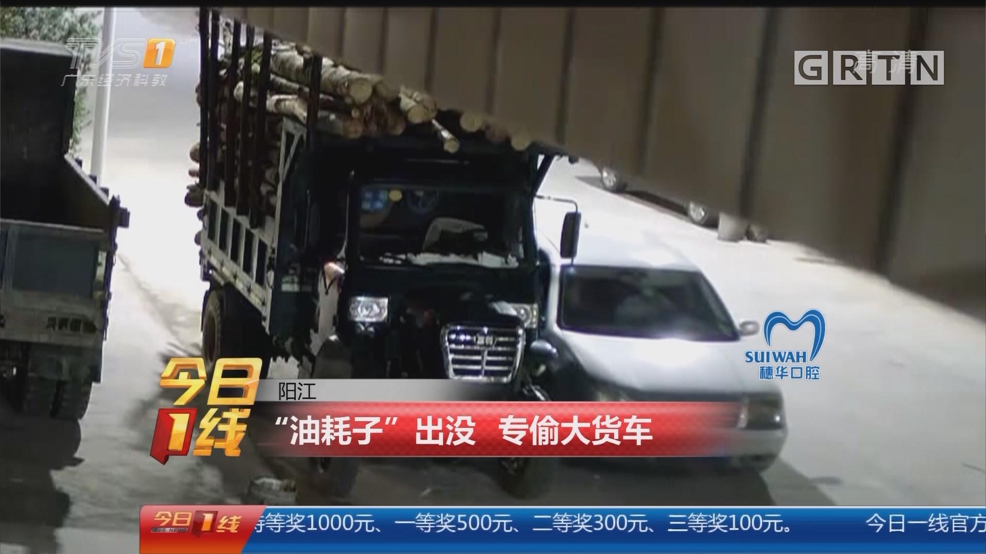 """阳江:""""油耗子""""出没 专偷大货车"""