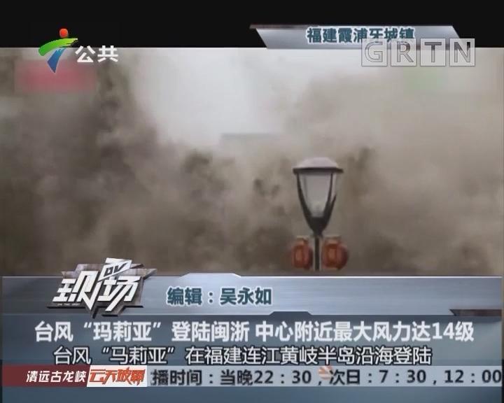 """台风""""玛莉亚""""登陆闽浙 中心附近最大风力达14级"""