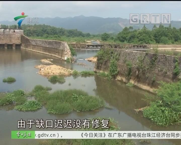 阳春:渠坝垮塌四年 缺口迟迟未修复
