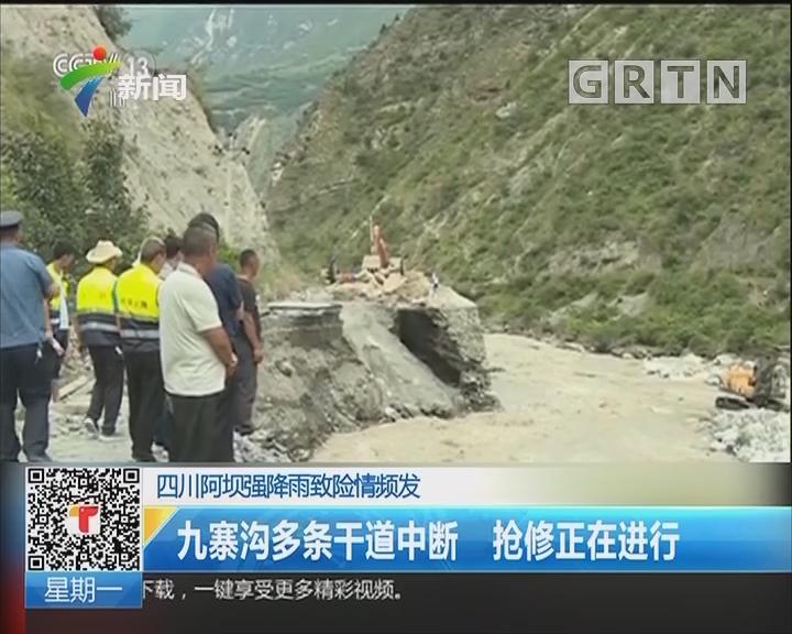 四川阿坝强降雨致险情频发:九寨沟多条干道中断 抢修正在进行