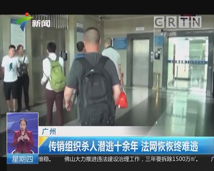 广州:传销组织杀人潜逃十余年 法网恢恢终难逃