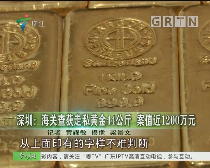 深圳:海关查获走私黄金44公斤 案值近1200万元
