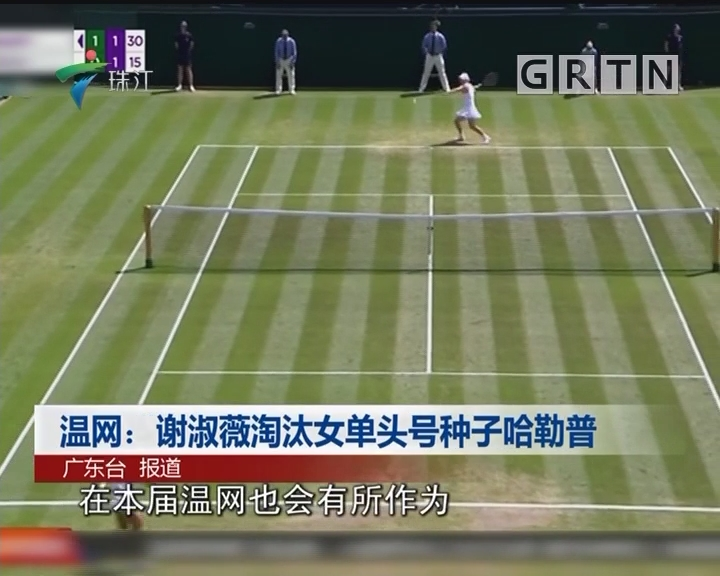 温网:谢淑薇淘汰女单头号种子哈勒普