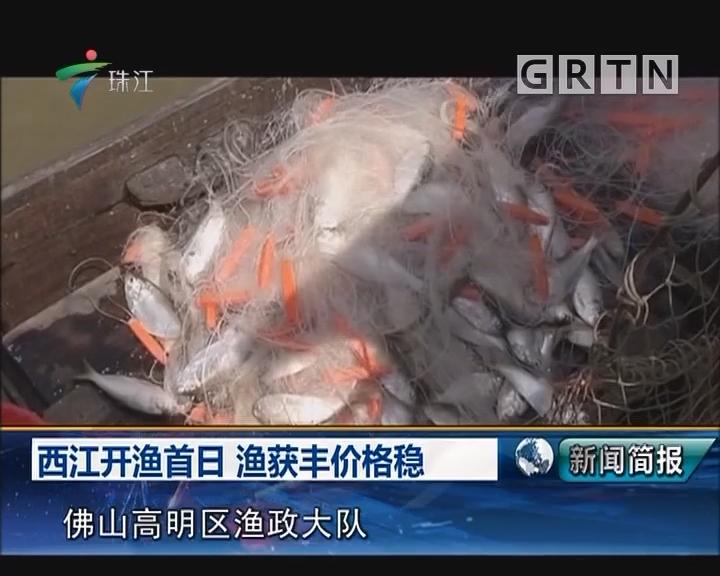 西江开渔首日 渔获丰价格稳