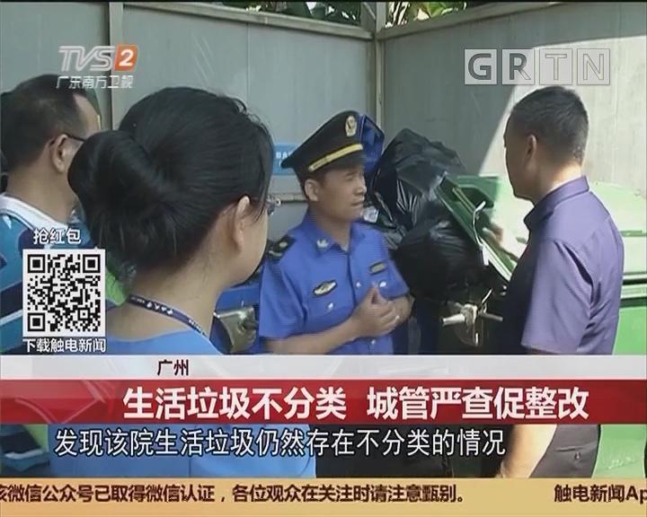 广州:生活垃圾不分类 城管严查促整改