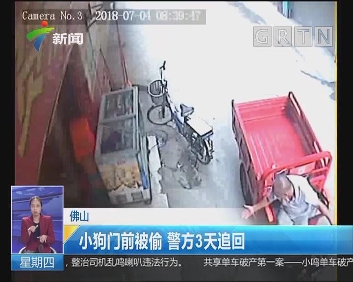 佛山:小狗门前被偷 警方3天追回