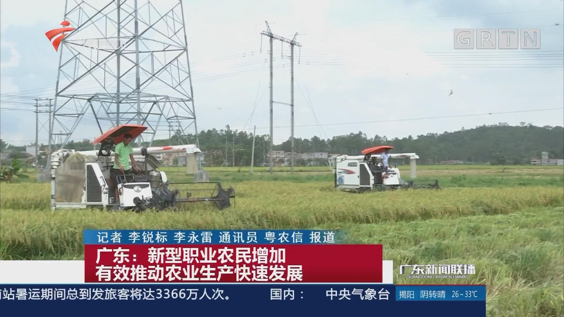 广东:新型职业农民增加有效推动农业生产快速发展