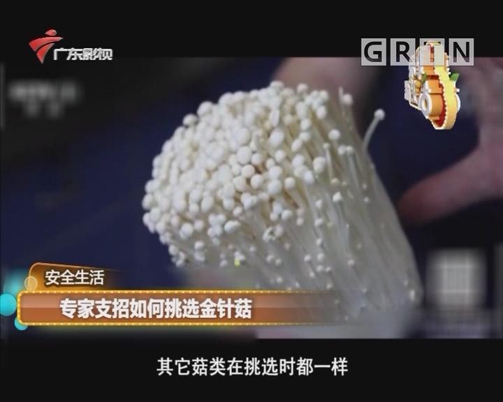 专家支招如何挑选金针菇