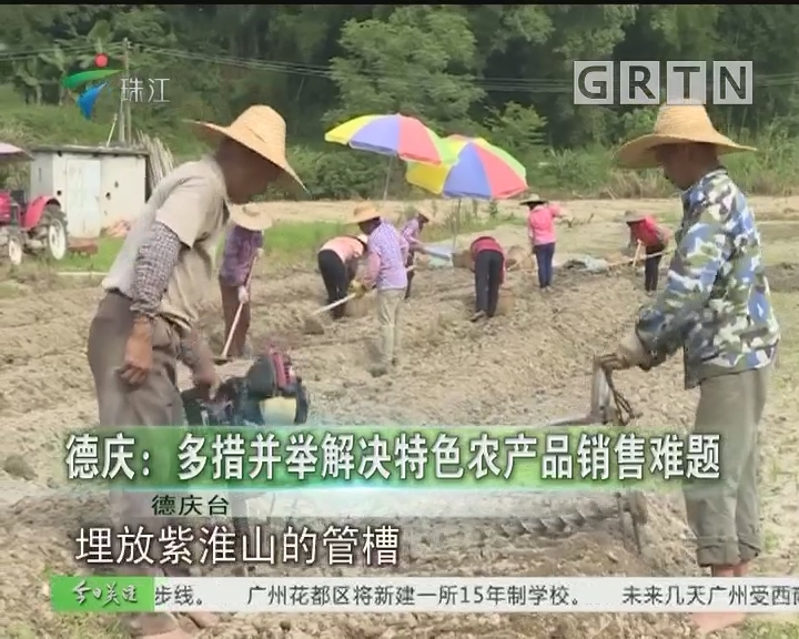 德庆:多措并举解决特色农产品销售难题