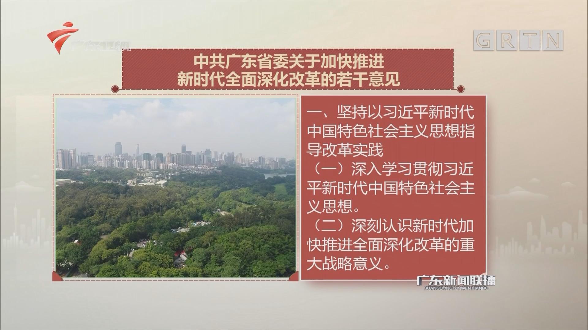 中共广东省委关于加快推进新时代全面深化改革的若干意见