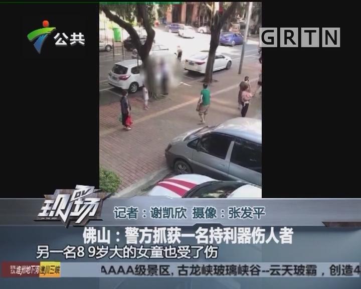 佛山:警方抓获一名持利器伤人者