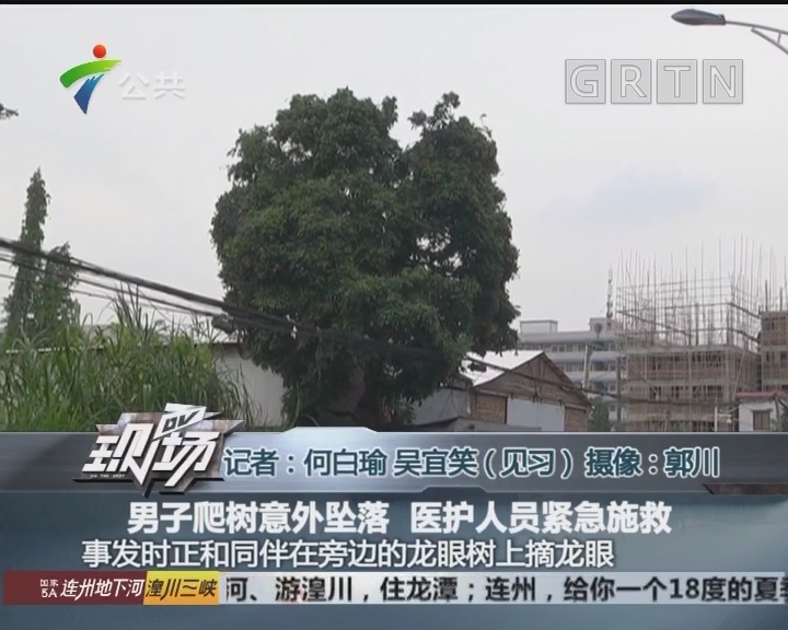 男子爬树意外坠落 医护人员紧急施救