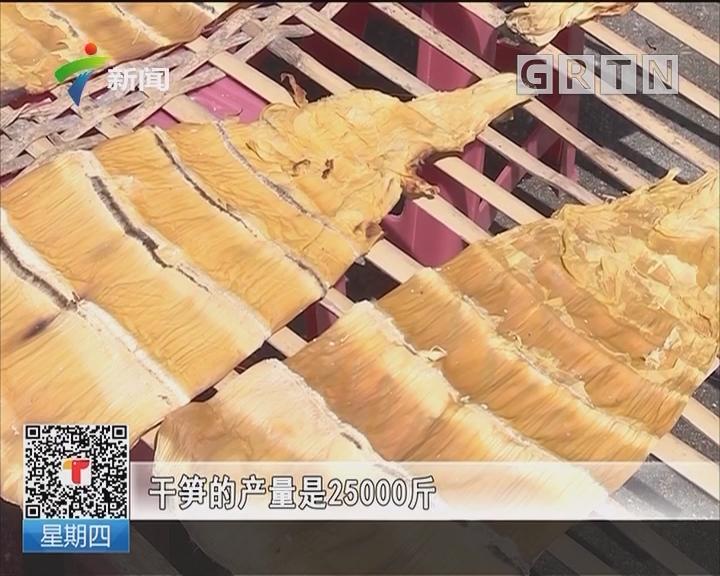 阳西:东水竹笋受青睐