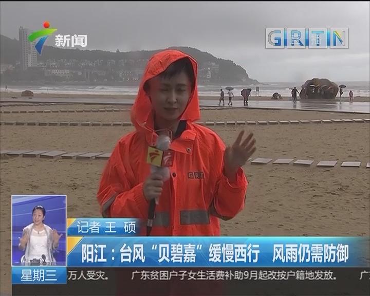 """阳江:台风""""贝碧嘉""""缓慢西行 风雨仍需防御"""