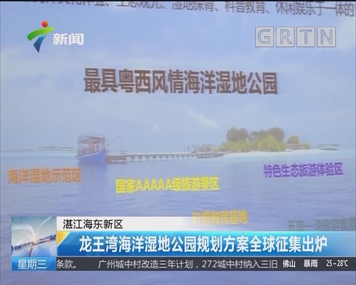 湛江海东新区:龙王湾海洋湿地公园规划方案全球征集出炉