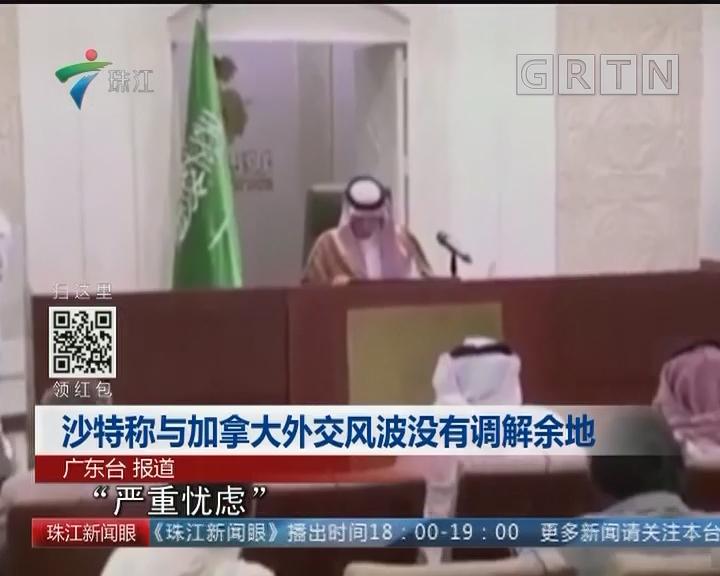 沙特称与加拿大外交风波没有调解余地