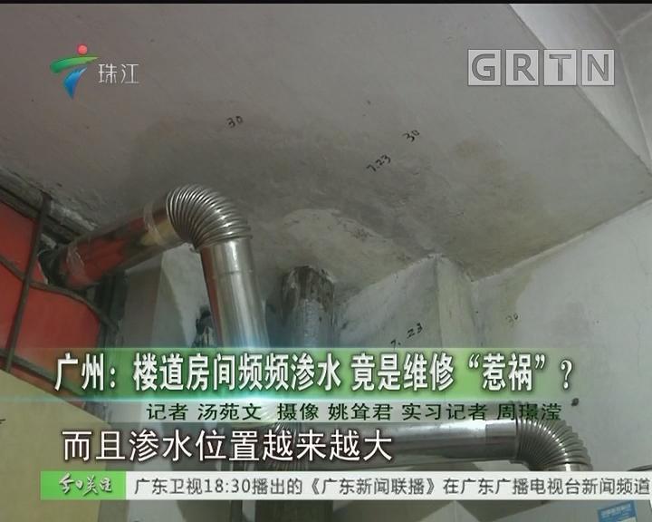 """广州:楼道房间频频渗水 竟是维修""""惹祸""""?"""