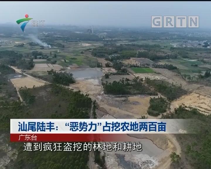 """汕尾陆丰:""""恶势力""""占挖农地两百亩"""