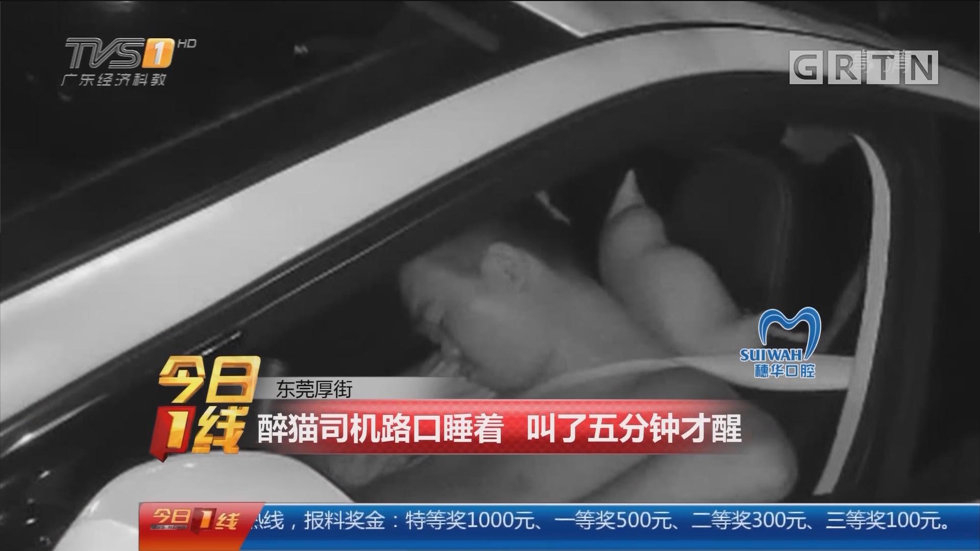 东莞厚街:醉猫司机路口睡着 叫了五分钟才醒
