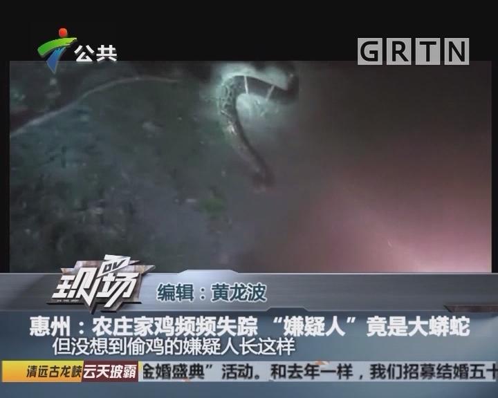 """惠州:农庄家鸡频频失踪 """"嫌疑人""""竟是大蟒蛇"""