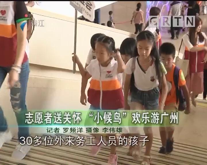 """志愿者送关怀 """"小候鸟""""欢乐游广州"""
