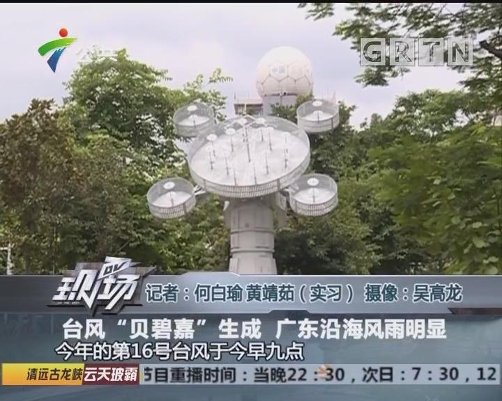 """台风""""贝碧嘉""""生成 广东沿海风雨明显"""