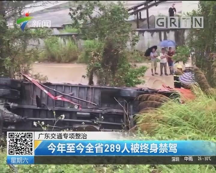 广东交通专项整治:今年至今全省289人被终身禁驾