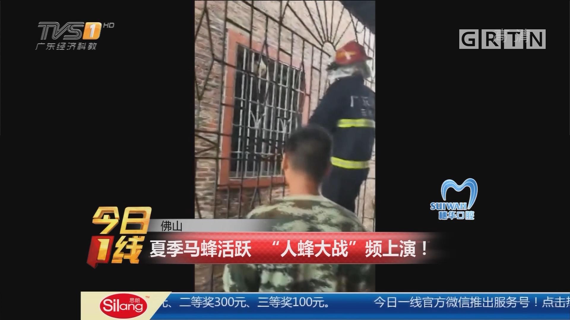 """佛山:夏季马蜂活跃 """"人蜂大战""""频上演!"""