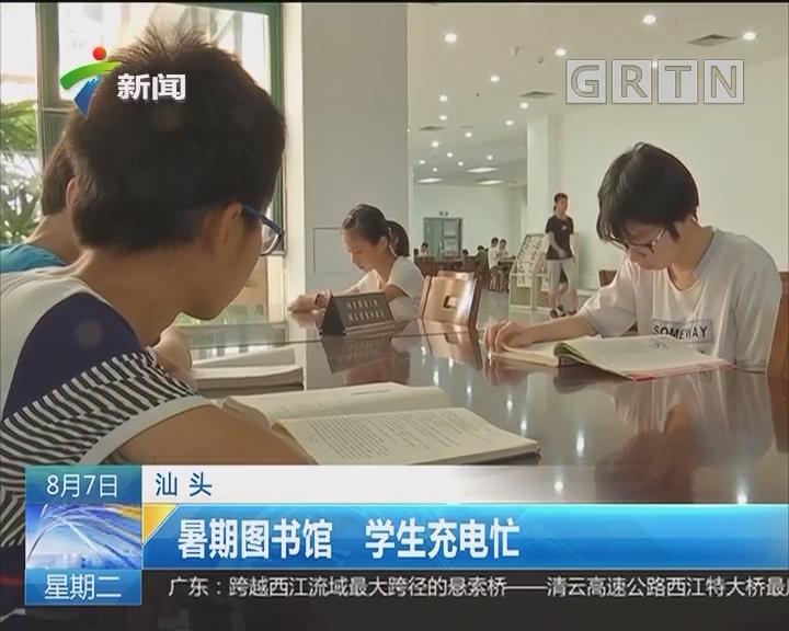 汕头:暑假图书馆 学生充电忙