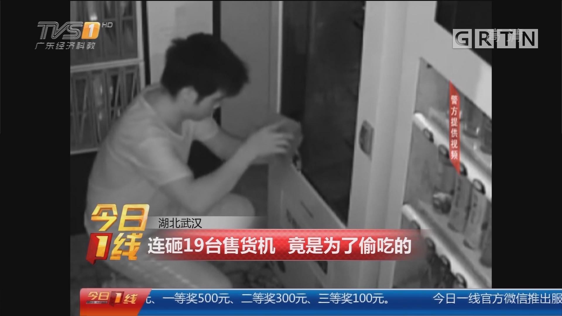 湖北武汉:连砸19台售货机 竟是为了偷吃的
