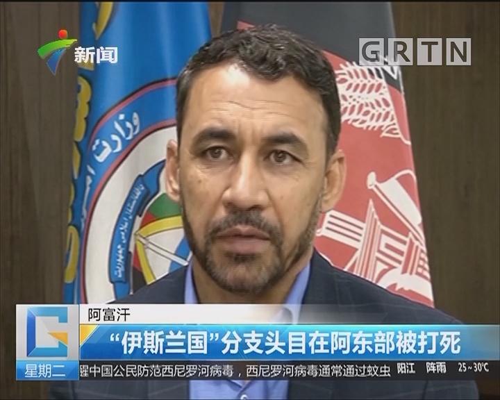 """阿富汗:""""伊斯兰国""""分支头目在阿东部被打死"""