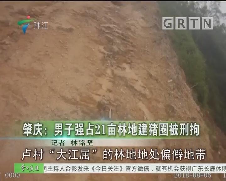 肇庆:男子强占21亩林地建猪圈被刑拘