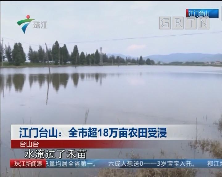 江门台山:全市超18万亩农田受浸