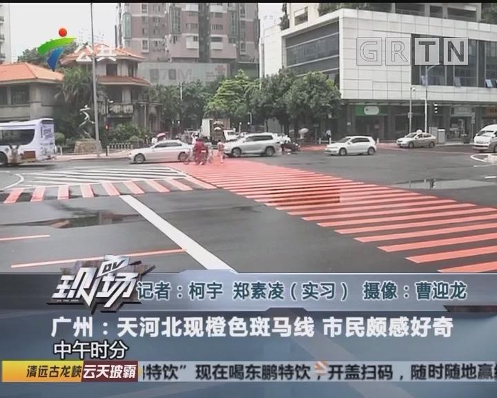 广州:天河北现橙色斑马线 市民颇感好奇