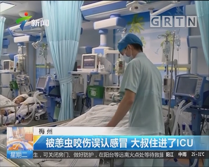 梅州:被恙虫咬伤误认感冒 大叔住进了ICU