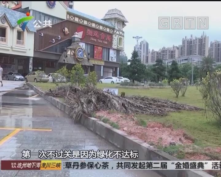 业主求助:小区绿化带被铲平 改建停车位