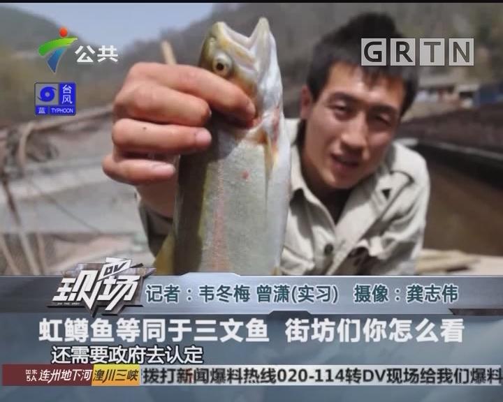 虹鳟鱼等同于三文鱼 街坊们你怎么看
