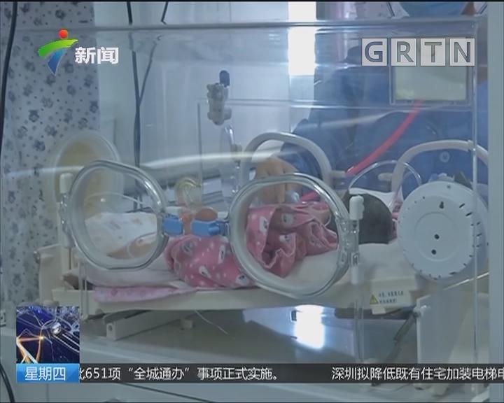 """揭阳:1.2公斤早产男婴急需""""熊猫血"""""""