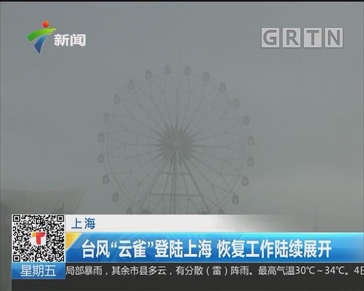 """上海:台风""""云雀""""登陆上海 恢复工作陆续展开"""