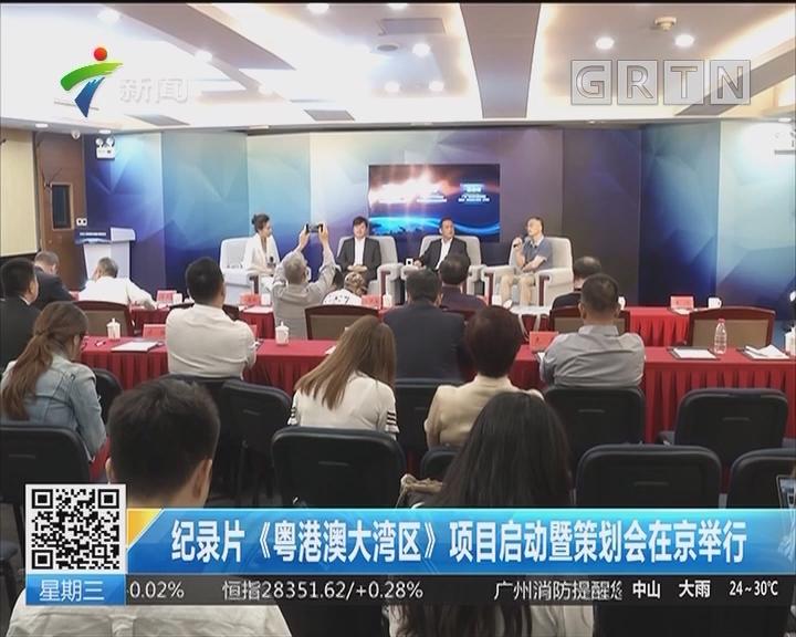 纪录片《粤港澳大湾区》启动暨策划会在京举行