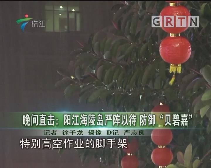 """晚间直击:阳江海陵岛严阵以待 防御""""贝碧嘉"""""""